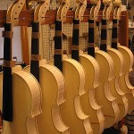 "Fronts of instruments in the process of final plate tuning, ""F"" hole carving and bass bar carving and tuning."